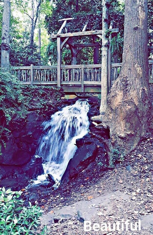 Hatcher Garden And Woodland Preserve 16 Photos Botanical Gardens 820 John B White Sr Blvd