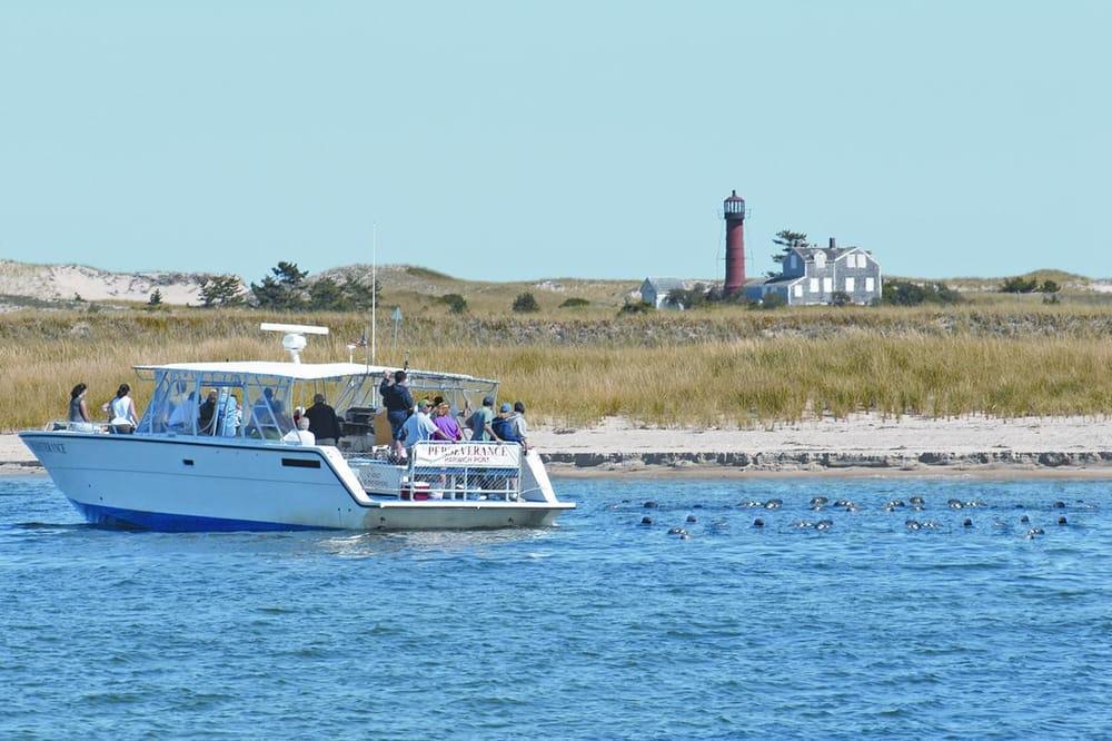 Monomoy Island Excursions Reviews