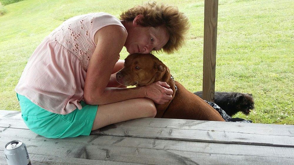 Photo of Kathie's Doggie Detailer: Forestville, NY