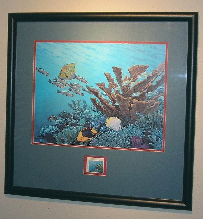 Photo Of Michaels Carrollwood Fl United States Matting And Framing Underwater