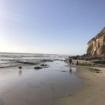 Photo De Del Mar Dog Beach Ca États Unis