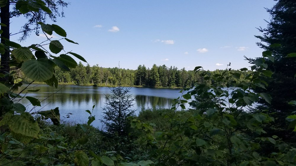 Bear Head Lake State Park: 9301 Bear Head State Park Rd, Ely, MN