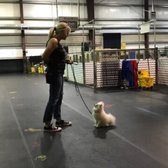 Yelp Reviews for Top Notch Kennels - 64 Photos & 72 Reviews - (New