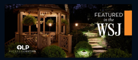 Outdoor Lighting Perspectives: 11160 Downs Rd, Pineville, NC