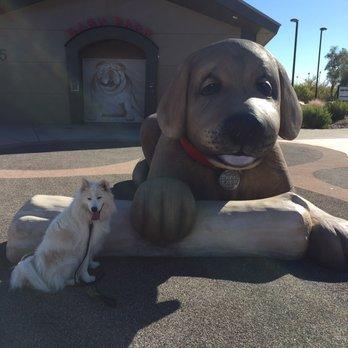 Big Dog Park Henderson Nv