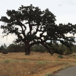 Red Bluff Recreation Area - Campgrounds - 1000 Sale Ln, Red