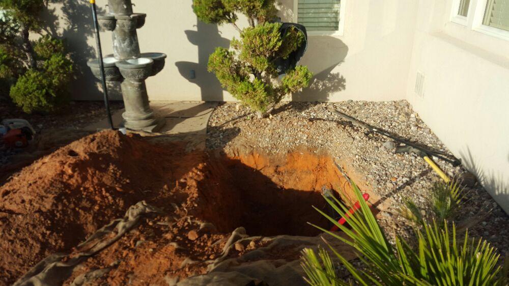 Tree Care Specialist: 398 E Palo Verde Dr, Washington, UT