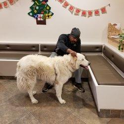 SAGE Veterinary Centers - 90 Photos & 369 Reviews