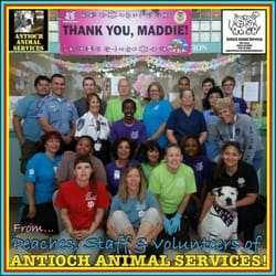 animal control in antioch ca