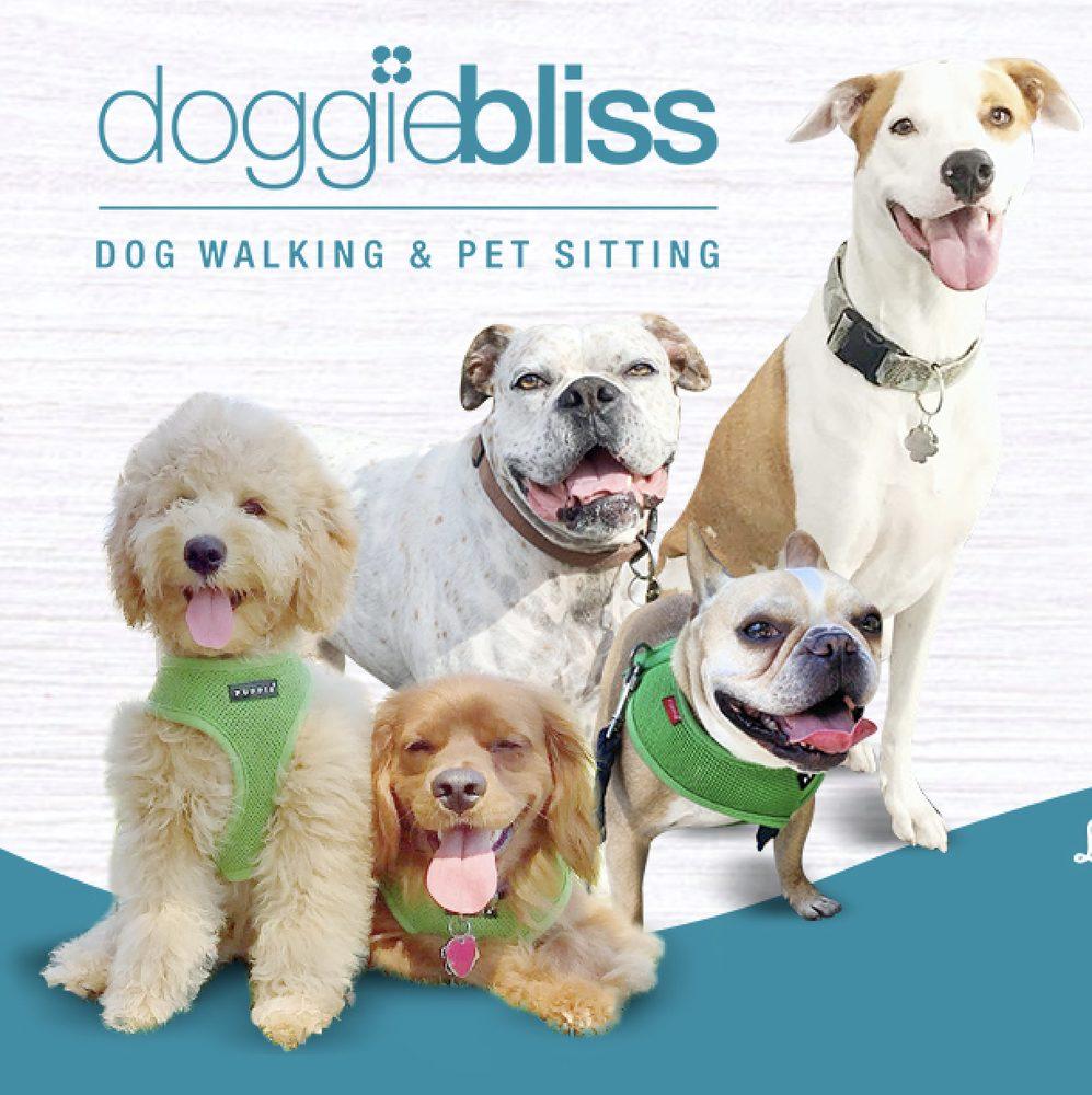 Doggie Bliss
