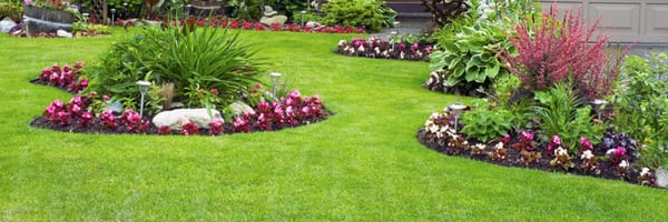 Photo of Hernandez Brothers Professional Landscape - Rockford, IL, United  States - Hernandez Brothers Professional Landscape - Tree Services - Rockford