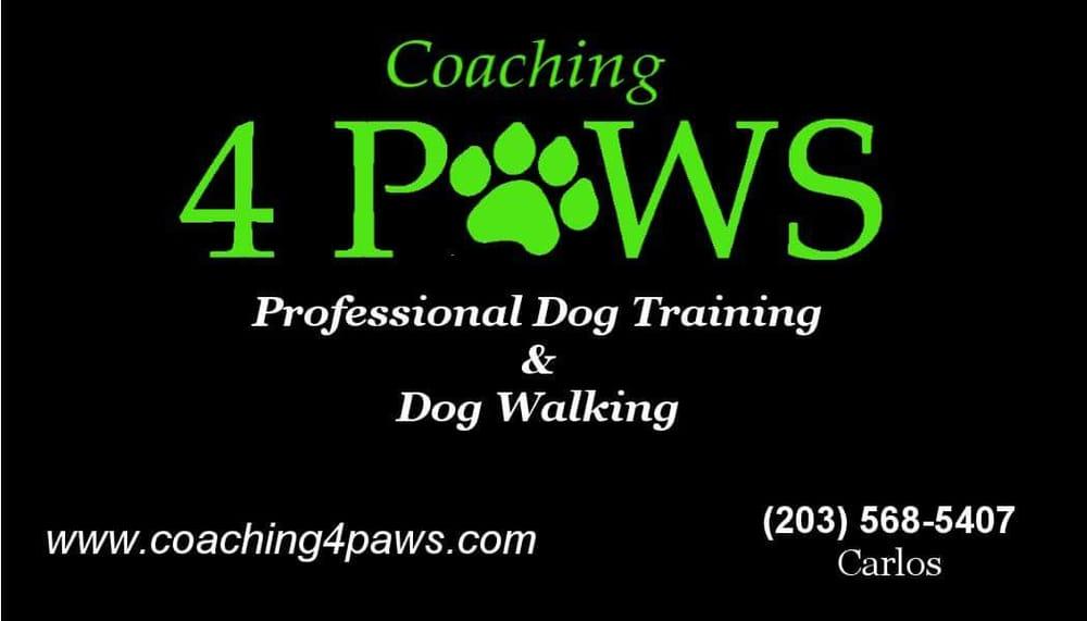 Coaching 4 Paws