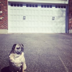 Photo Of Door Pro America   Hillside, IL, United States. Love Sittinu0027