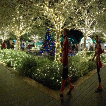 Exceptionnel Photo Of Florida Botanical Gardens   Largo, FL, United States. Holiday  Lights