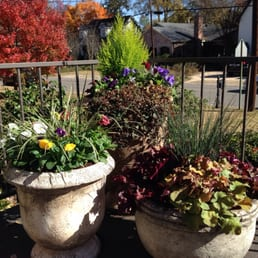 Photo Of Portera Landscape Design   Birmingham, AL, United States. Winter  Planters