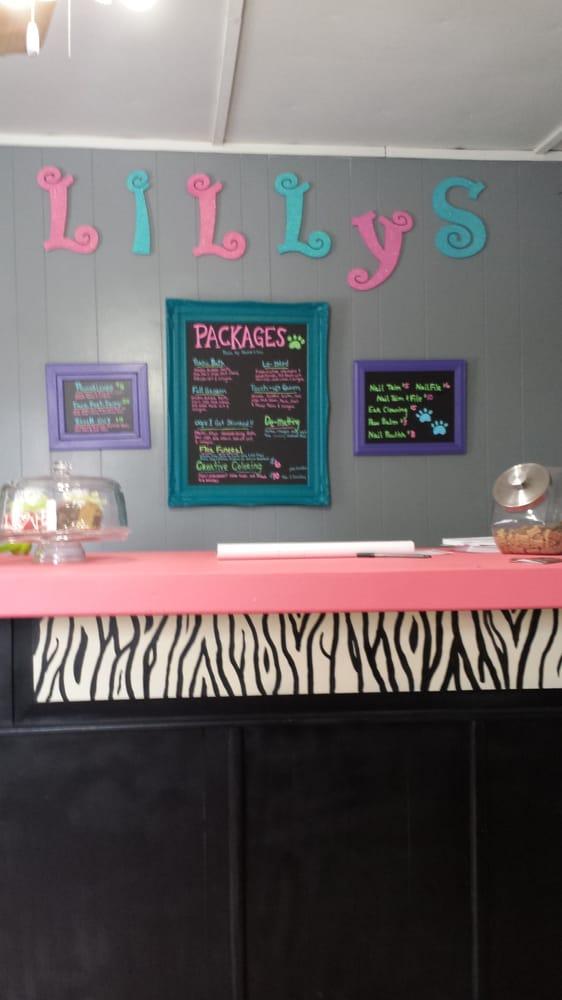 Lilly's Pet Grooming: 127 Colbert Ln, Whiteside, MO