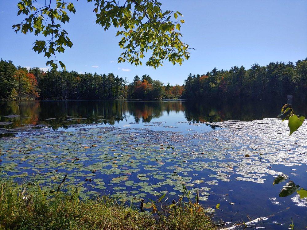 Donnabeth Lippman Park: 18 Chaffin Pond Rd, Windham, ME