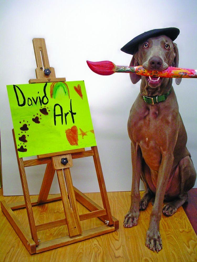 David Art Center