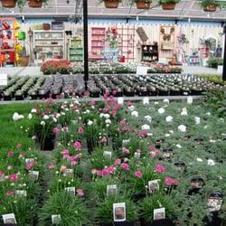 Photo Of Vicki S Garden Center Spokane Wa United States