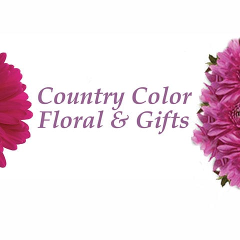 Country Color Floral & Gifts: 104 S Bill St, Francesville, IN