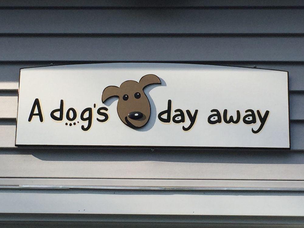 A Dog's Day Away: 440 Weymouth St, Holbrook, MA