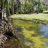 Charmant Photo Of Mead Botanical Garden   Winter Park, FL, United States. A Stream