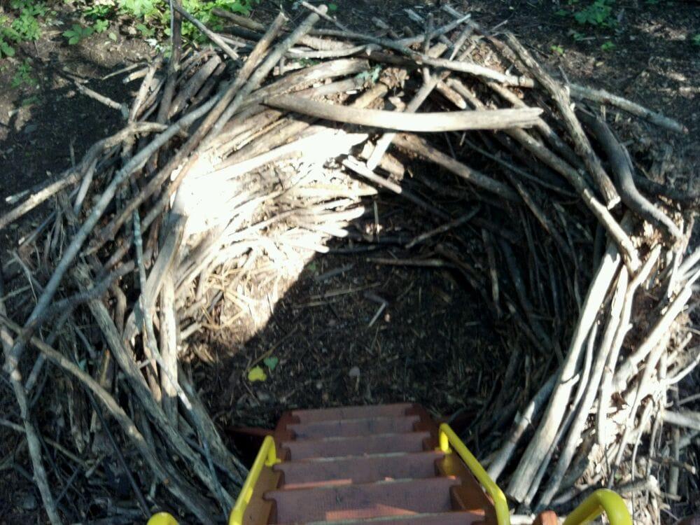 Heckrodt Wetland Reserve: 1305 Plank Rd, Menasha, WI