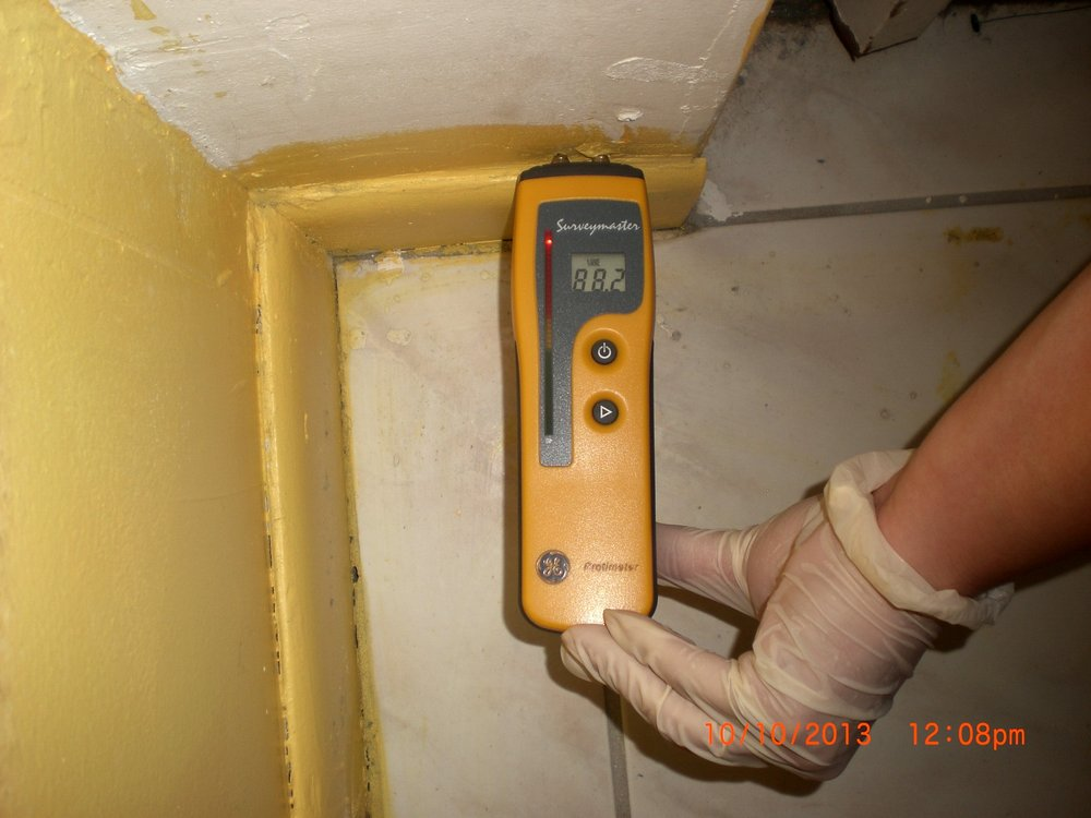 On-Site Mold Analysis