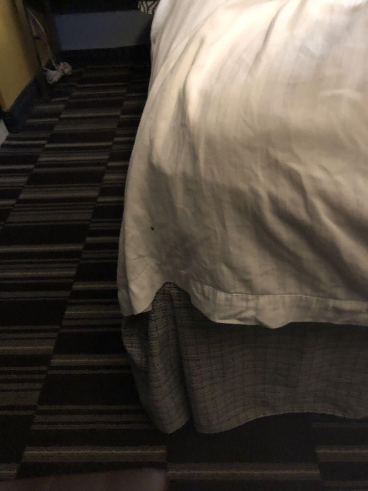 Microtel Inn & Suites by Wyndham Riverside: 4500 Linden Avenue, Kettering, OH
