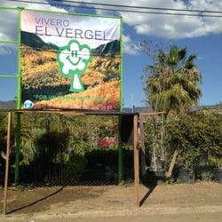 Vivero el vergel viveros y jardiner a km 11 carretera for Viveros en oaxaca