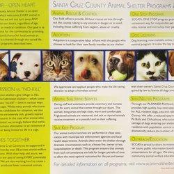 Santa Cruz County Animal Shelter 34 Photos 61 Reviews Animal