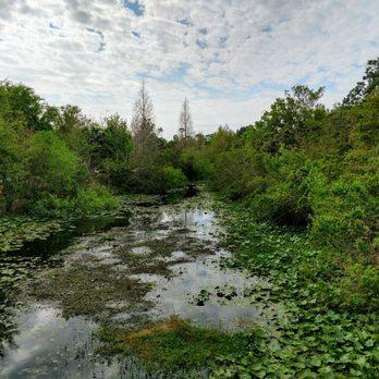Florida Botanical Gardens - 312 Photos & 54 Reviews - Botanical ...