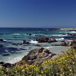Photo Of Asilomar Conference Grounds Pacific Grove Ca United States