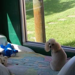 Parkway Pet Resort - Pet Sitting - 2826 Franklin St