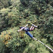 Ziplinex - 18 Photos - Ziplining - 32016 NE Healy Rd, Amboy, WA