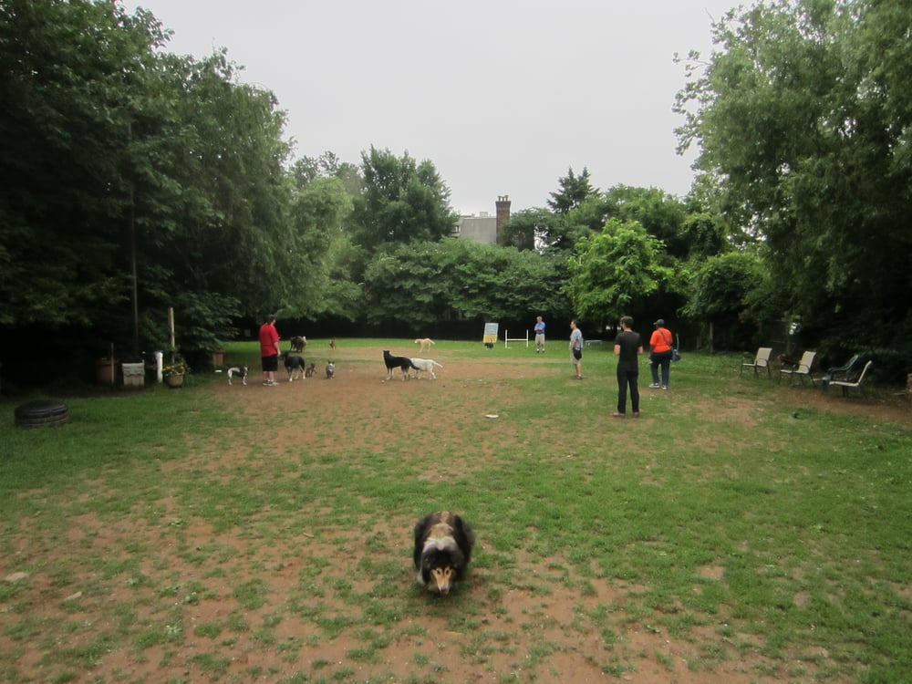 Chester Avenue Dog Park
