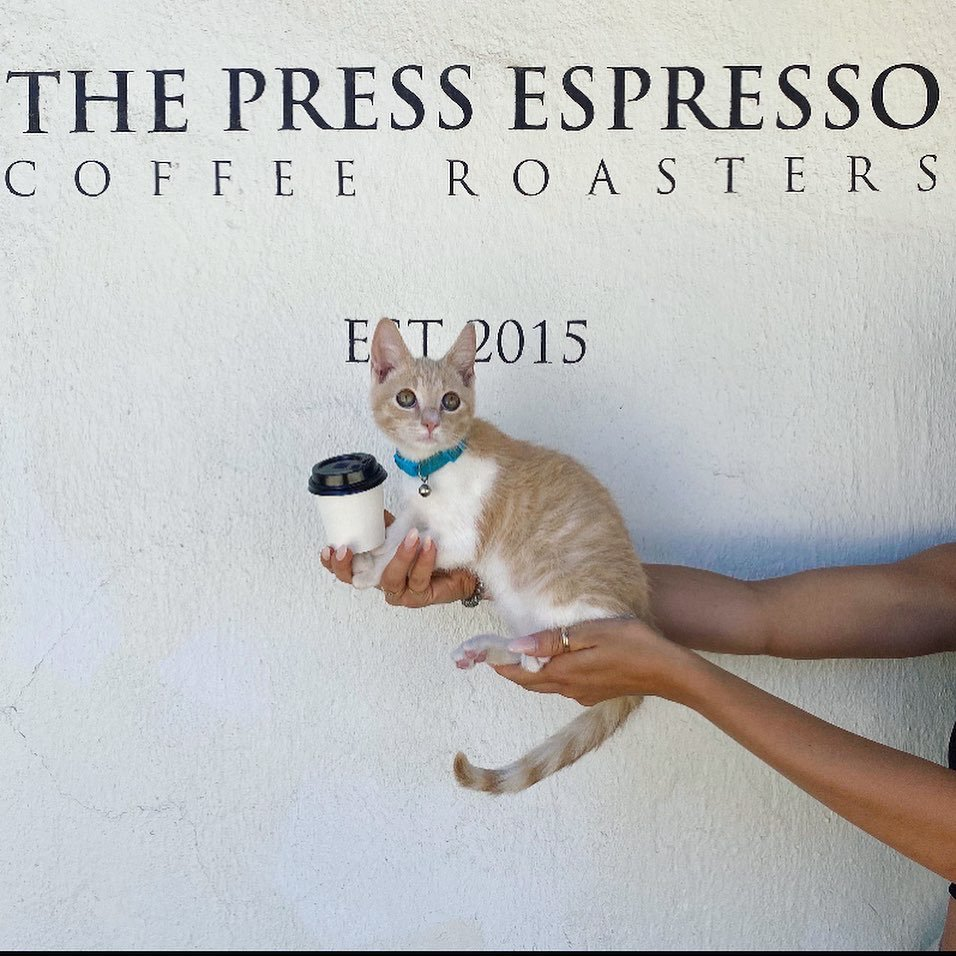 The Press Espresso