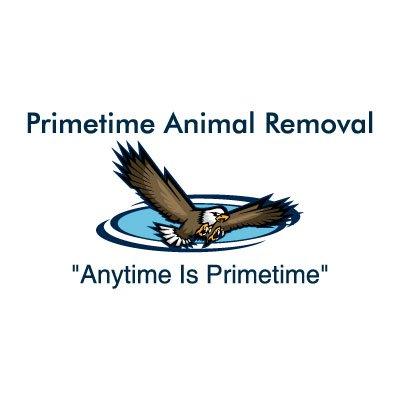 Primetime Animal Removal: 706 W Main St, Arcadia, IN