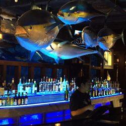 Bass Pro Shops 112 Fotos E 39 Avalia Es Revendedores