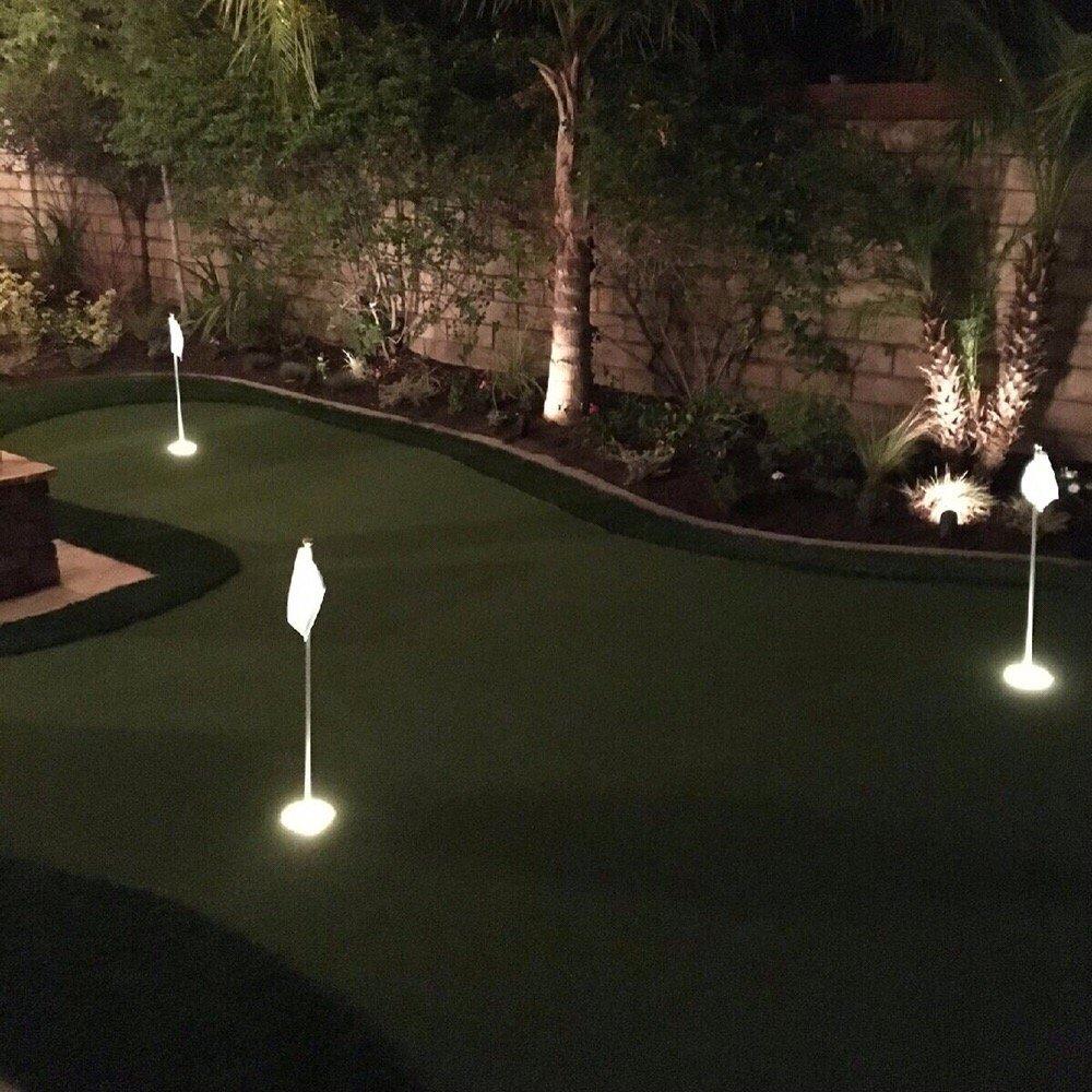 Custom 300 Sq Ft Backyard Putting Green With Light