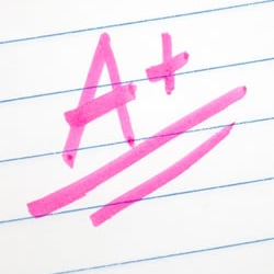 Custom research essay writing