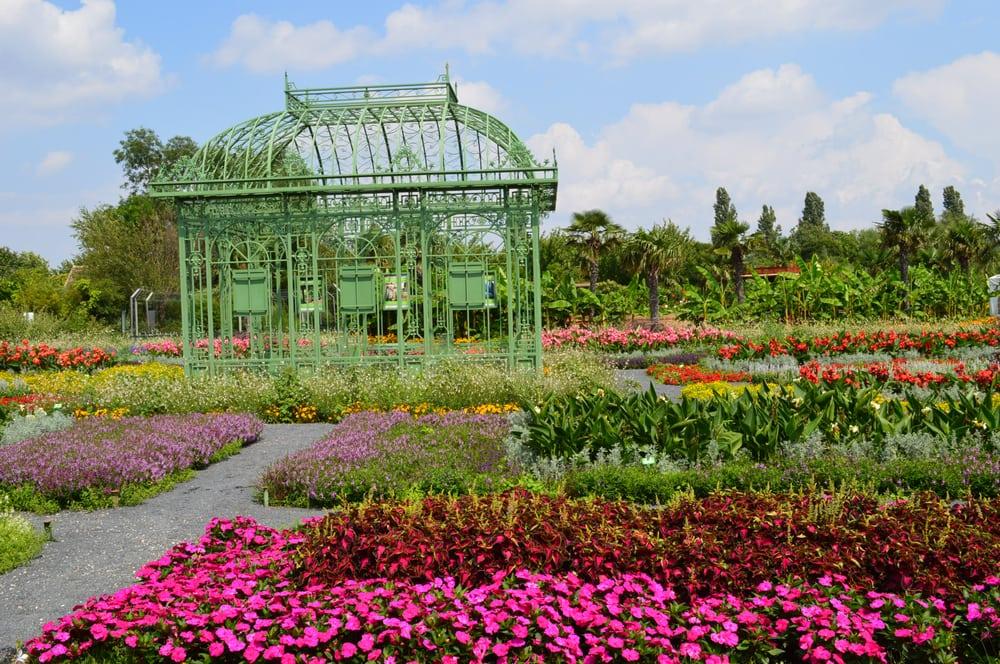 Blumeng rten und palmenhaus hirschstetten 78 photos 13 for Jardin botanique 78
