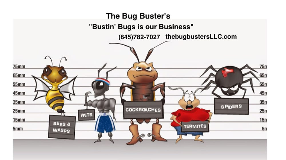 The Bug Buster's: Harriman, NY