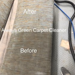 Photo Of Always Green Carpet Cleaner Brooklyn Ny United States Upholstery Cleaning