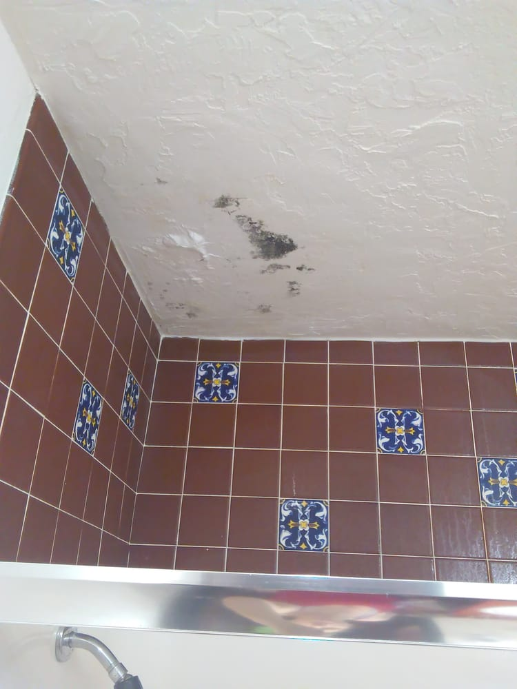 Water Leak W Black Mold EW Yelp - Casavia tile