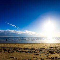 Photo Of Carpinteria State Beach Ca United States