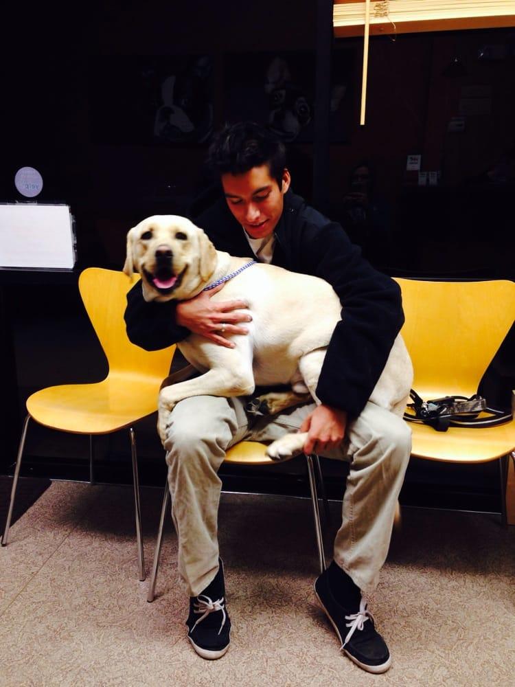 Solano-Napa Pet Emergency Clinic