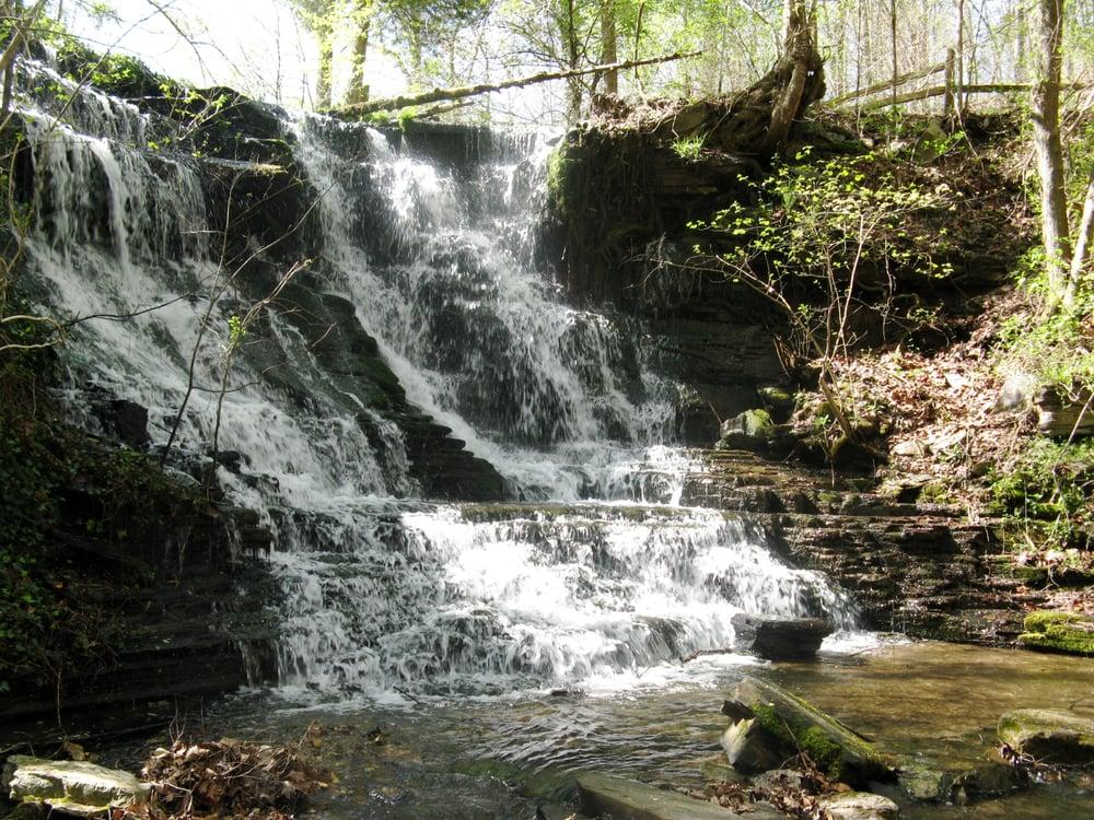 Ledford Mill Bed and Breakfast: 1195 Shippmans Creek Rd, Tullahoma, TN