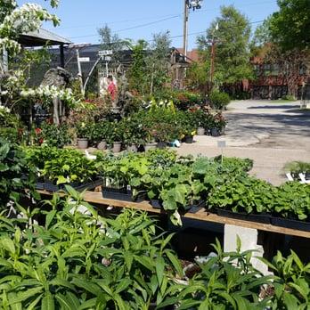 Joshua\'s Native Plants & Garden Antiques - 81 Photos & 42 Reviews ...