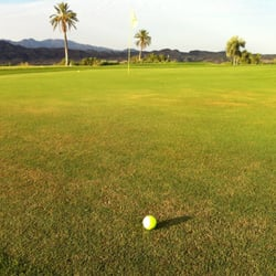 Island Golf Course Lake Havasu City
